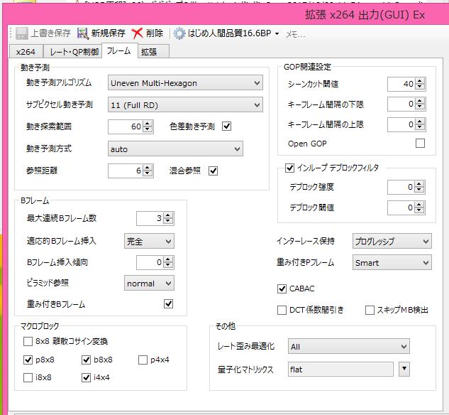 Hajime Ningen_x264guiEx003.png