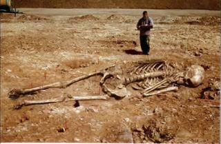 巨人の化石9.jpg
